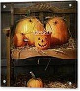 Small And Big Pumpkins On An Old Bench  Acrylic Print