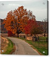 Small Country Road Acrylic Print