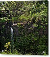 Small Waterfall - Hana Highway Acrylic Print