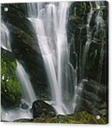 Small Waterfall Near The Milford Track Acrylic Print