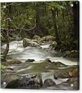 Smokey Mountain Stream No.326 Acrylic Print