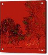 Smokey Woods Acrylic Print
