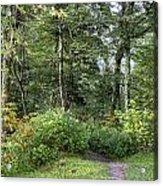 Smoky Mountain Path Acrylic Print
