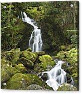 Smoky Mountain Waterfall - Mouse Creek Falls Acrylic Print