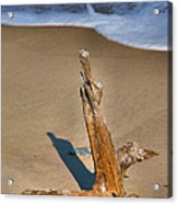 Snag And Surf II Acrylic Print by Steven Ainsworth