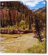 Snake River And Kayaker Acrylic Print