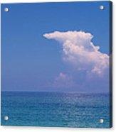 Snorkeler In Paradise Acrylic Print
