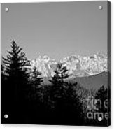 Snow-capped Mountain And Trees Acrylic Print