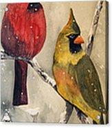 Snow Cardinals Acrylic Print