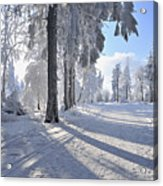 Snow Covered Path, Rennsteig, Grosser Inselsberg, Brotterode, Thuringia, Germany Acrylic Print