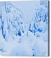 Snow-covered To Vallee Des Fantomes Acrylic Print