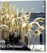 Snow Dust Christmas Card Acrylic Print