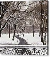 Snow In Central Park Acrylic Print