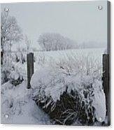 Snow, Rime Ice, And Fog Cover Acrylic Print
