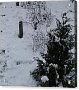 Snow With Small Tree Acrylic Print