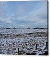 Snowy Field Acrylic Print