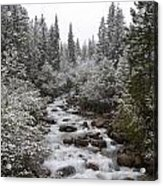 Snowy Foliage Along Stream In Autumn Acrylic Print