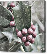 Snowy Holly Christmas Card Acrylic Print