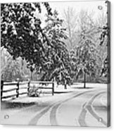 Snowy Tracks Acrylic Print