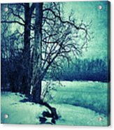 Snowy Woods By A Lake Acrylic Print