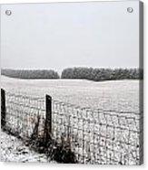 Snowyfence Acrylic Print