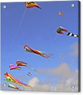 Soaring With The Clouds Acrylic Print