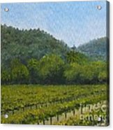 Solis Winery Acrylic Print