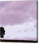 Solitude - Denbigh Moors Acrylic Print