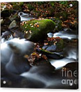 Soothing Waters  Acrylic Print