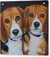 Sophie And Sadie Acrylic Print