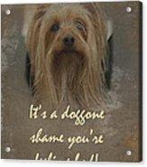 Sorry You're Sick Greeting Card - Cute Doggie Acrylic Print
