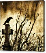 Soulful Crow Acrylic Print
