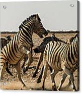 Sour Stripes 3 Acrylic Print
