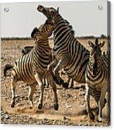 Sour Stripes Acrylic Print
