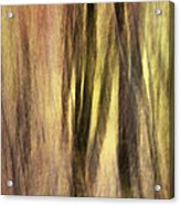 Sourwoods In Autumn Abstract Acrylic Print
