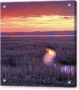 South Carolina Tidal Marshes Acrylic Print
