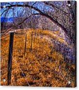 South Platte Fenceline Acrylic Print