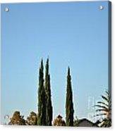 Southern California Hot Air Balloons Acrylic Print