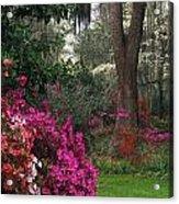 Southern Garden - Fs000148 Acrylic Print