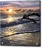 Sparkly Water At Driftwood Beach Acrylic Print