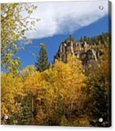 Spearfish Canyon Fortress In Rock Acrylic Print