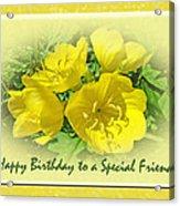 Special Friend Birthday Greeting Card - Yellow Primrose Acrylic Print
