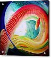 Sphere Serpula 2 Acrylic Print by Drazen Pavlovic