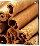 Spice, Cinnamon, Acrylic Print