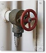 Spigot Acrylic Print by Blink Images