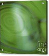 Spinner Vision Acrylic Print