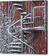 Spiral Staircase With Snow And Cooper's Hawk Acrylic Print