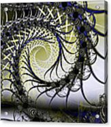 Spiral Web Acrylic Print