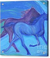 Spirit Guide By Jrr Acrylic Print
