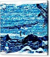 Spirit Of The Wild Blue Acrylic Print